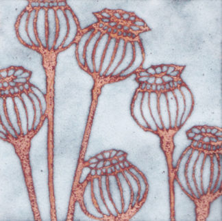 Poppy Seedheads enamel by Janine Partington