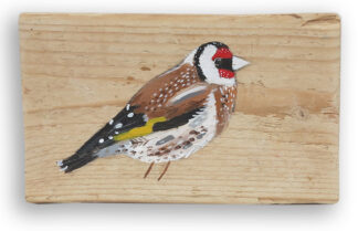 Eugene the Goldfinch by Liz Toole